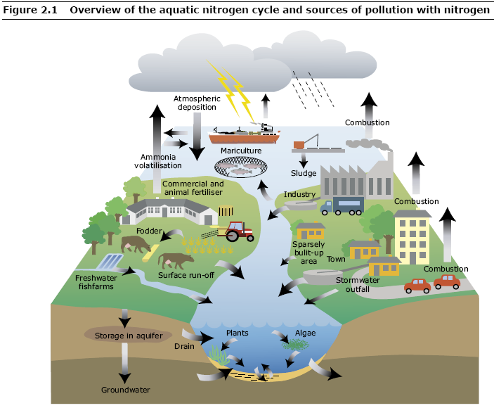 Point Sources of Pollution