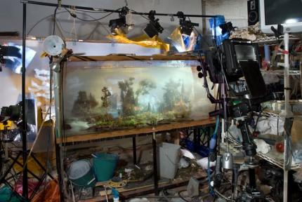 mini-landscapes-inside-a-tank-that-looks-like-paintings-kim-keever-7